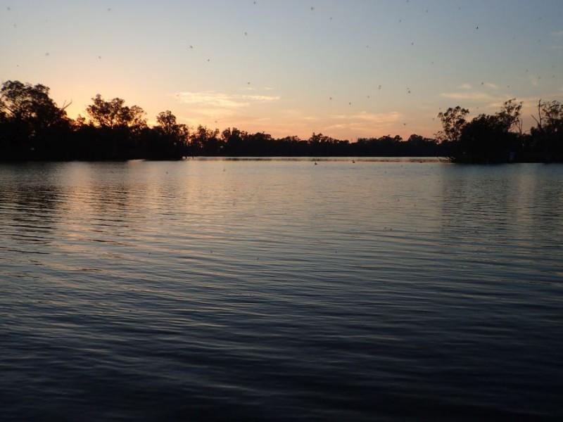 Moorook Sunrise