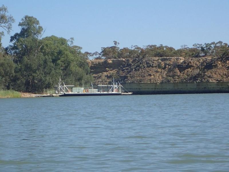Cadell Ferry